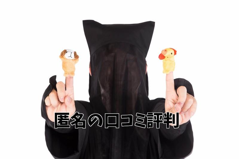 ゼウスWiFiの匿名口コミ評判